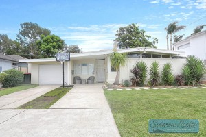 WebSite-13907_7 Adrian Place Greystanes1450206_175_338